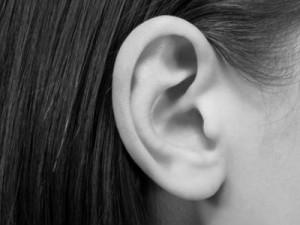 Les oreilles